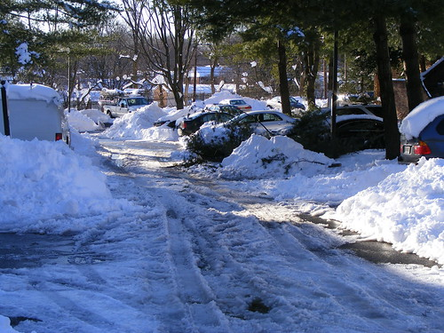 Unplowed Lane, Montgomery Chase, Aspen Hill