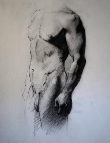 20100219 male torso