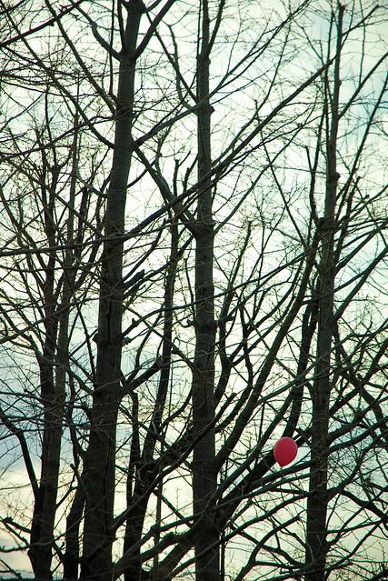 枝先の風船