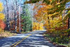 Road (Rafakoy) Tags: road sky color colour tree green nature colors digital landscape countryside nikon colours country tress paviment d90 nikond90 aldorafaelaltamirano rafaelaltamirano aldoraltamirano