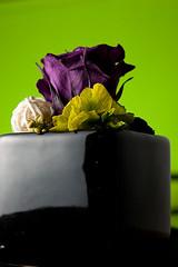 Glatine Rosco Lime Green (maboutiquephoto.fr) (olivier.buhler) Tags: test photo flash rosco gel gelatine filtre clairage filtres glatine maboutiquephotofr