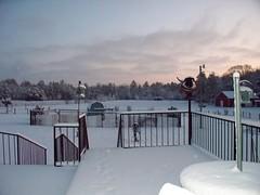 Snow of Feb 2010 017