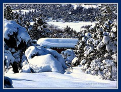 Colorado Country Life! (mountainbeliever) Tags: winter white snow nature beautiful landscapes scenery snowy farms picnik fourcorners winterscenes wintery southwestcolorado farmscenes ilovesnow horsetrailers winterfarms winterintherockies coloradowinters reddoorfotographie rockymountainwinters snowywinters snowymountainscenes