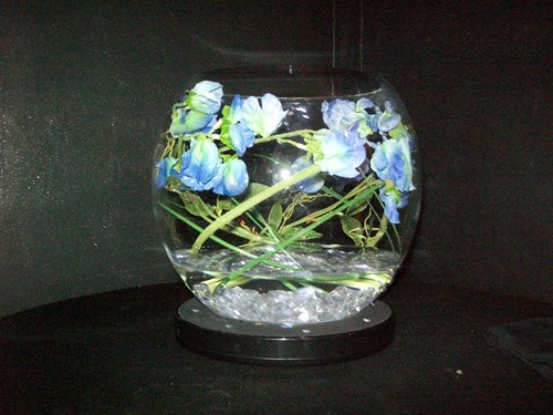 goldfish bowl table centerpieces. FISH BOWL ILLUMINATED