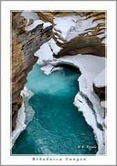 Athabasca Canyon (Maclobster) Tags: