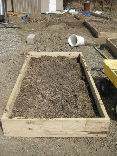 Raised beds3
