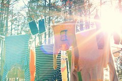let the sun shine. (j*lewis) Tags: laundry flare 365 handknits inoneday 365project 78365 andallthewoolensdried henrystartssoccertomorrow hehassomeexpectations thoughimnotsurewhattheyare ihopehesnotdisappointed ifanythinghegetstowearshinguards