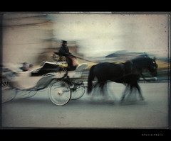 Krakow Ghost Rider (Final Version) (PetterPhoto) Tags: horses horse texture canon wagon carriage ghost poland krakow powershot cart rider pro1 petterphoto nofk
