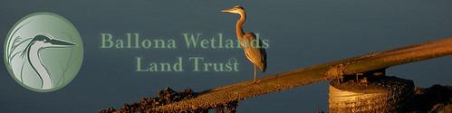 Ballona Wetlands Trust