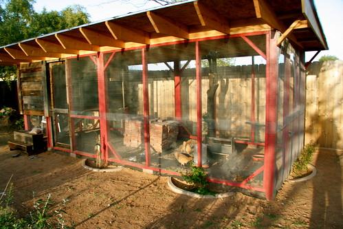 Chicken Coop w/ chickens