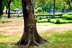 DSC_4180 (sim_0285) Tags: park friends sunday ive saigon lvt