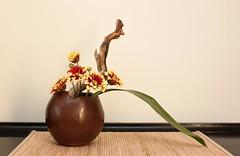 Ikebana 30 mar 10 (2)