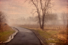 road not taken (Chicago_Tim) Tags: road ny newyork texture fog path antique albany aged corningpreserve realmagic