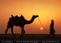 India - Rajasthan - Thar - Great Indian Desert - Camel and his rider at Sunset ( Lucie Debelkova / www.luciedebelkova.com) Tags: world trip travel sunset vacation sky sun india holiday tourism nature beauty animal silhouette horizontal walking outdoors photography togetherness holding asia tour place desert dusk wildlife tranquility visit move location tourist camel journey destination environment backlit traveling visiting exploration sanddune domesticanimals idyllic touring scenics hindi thar rajasthan clearsky routine tranquilscene oneman oneanimal  republicofindia traveldestinations ruralscene thardesert nonurbanscene workinganimal lpdesert indiansubcontinent beautynature wwwluciedebelkovacom lpdeserts