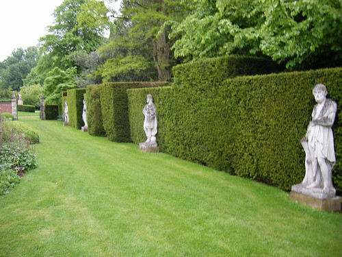 A line of statues in the grounds of Cottesbrooke Hall