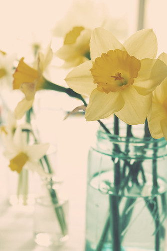 Sweet, sweet spring