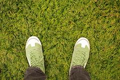 (Froschmann : ) Tags: green grass japan court shoes university saitama puma   rikkyo   k7   niiza sigma30mmf14exdc    puma917mid