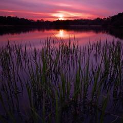 [フリー画像] [自然風景] [湖の風景] [夕日/夕焼け/夕暮れ]        [フリー素材]