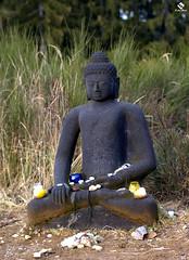 Buddha (Lukas Brger) Tags: buddha budda wrthersee olympuse510 sigma50mm14