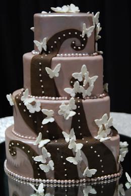 Modern Butterfly cake