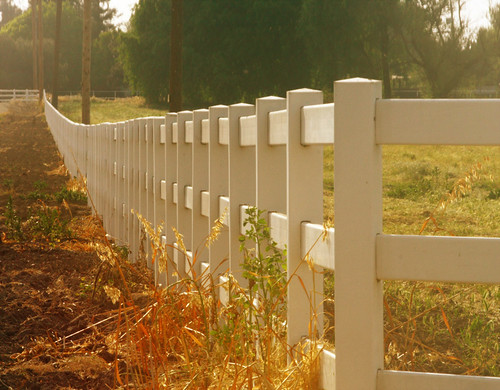 fence in color