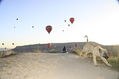 カッパドキアの地と空と(トルコ旅行記その2)