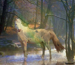 Merlin, Paint Pony,Spirit of the Forest (rubyblossom.) Tags: horse forest project photo spirit manipulation merlin 365 makeitinteresting