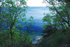 Dalmatian blue (-- blue in green --) Tags: blue sea croatia adriatic