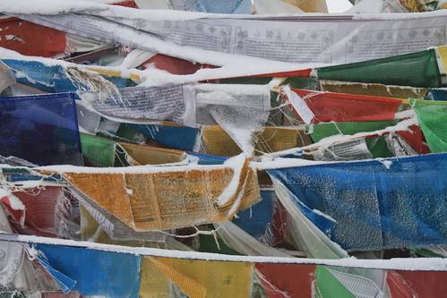4609110995 2e577b258c Seven Days in Tibet