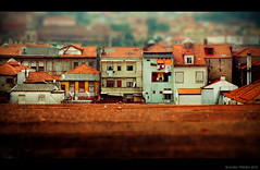 Porto rooftop tilt (RiaPereira - here and there) Tags: roof portugal miniature europe porto clothesline charming itsasmallworld oldworld tiltshift tiltshiftphotography riapereira