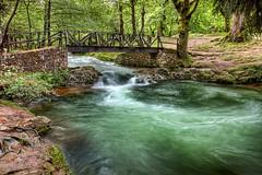 En el bosque - In the forest - Explore (Azdoe.) Tags: park bridge parque color water rio forest canon river puente arboles explore bosque 7d seda santander cantabria parquenacional explored ucieda sajabesaya