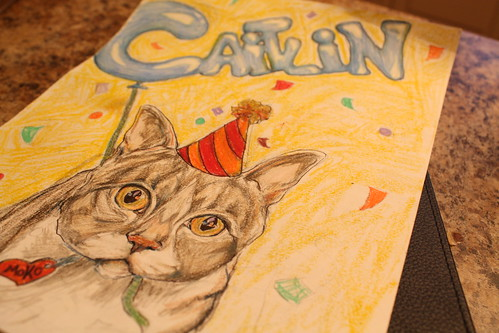 Birthday Card (by caitysparkles)