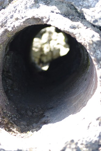 Lava Tree Mould