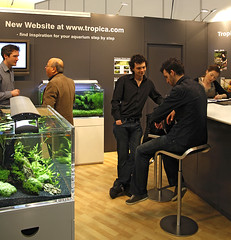 dan and graeme (George Farmer) Tags: plants fish water aquarium aquascape tropica aquascaping tgm georgefarmer ukaps interzoo