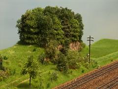 PICT9325 (dampflok44) Tags: modelleisenbahn modelrailroad modellbau modellbahn modelllandschaft modulanlage
