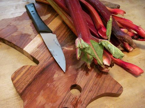 Rustic Rhubarb Tart - fresh rhubarb from Ellis Family Farm