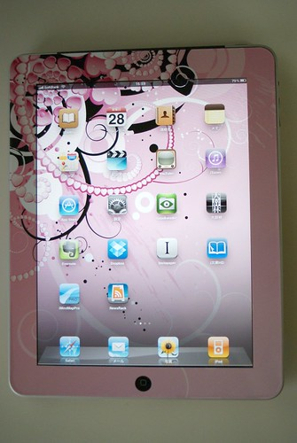 iPad with Skin: Front