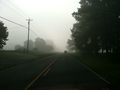 Foggy Country Road - 521 (SouthernBreeze) Tags: road county travel light usa apple fog america geotagged photography photo al day pavement united unitedstatesofamerica country alabama foggy marshall smartphone photograph arab american states ios geotag 3gs 2010 iphone 313 southernbreeze iphoneography regionwide