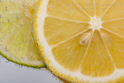 Citrus Lemon & Lime 2