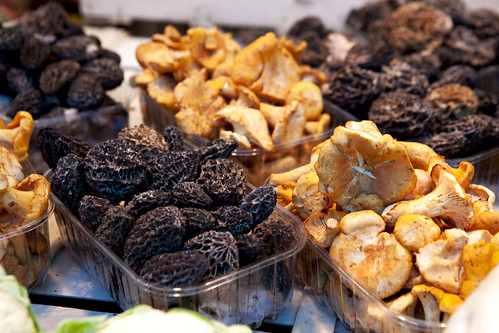 Fresh morels and chanterelles