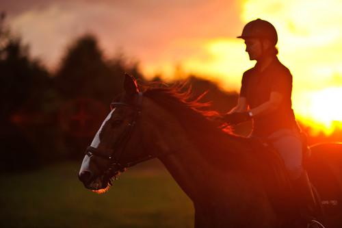 Horse Back Riding Photo