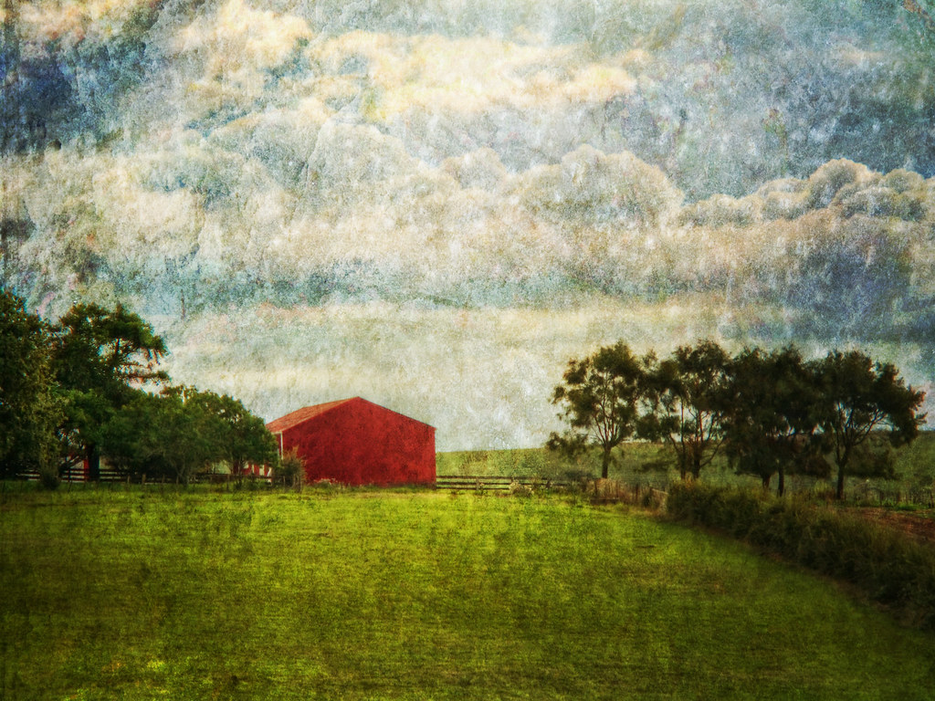 Red Barn on Paerata Road