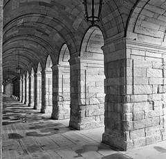 Arcos Plaza del Obradoiro II