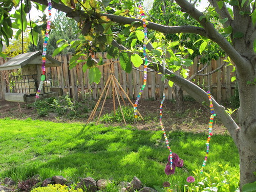 All 5 rainbow strings hangin in the backyard tree