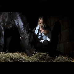 IN THE STABLE (kakabi) Tags: horse 365 stable pareo strobist