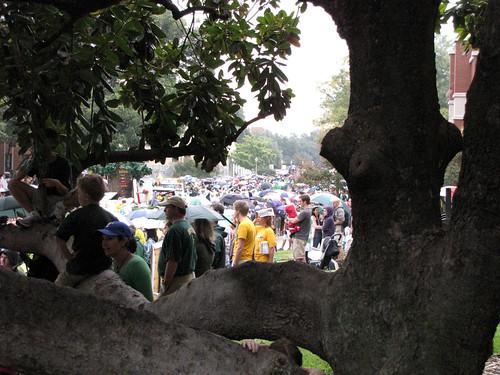 Baylor Parade-5