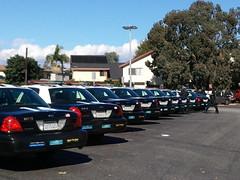 LAPD Pacific Division Squad Cars