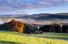 Nith valley (Kenny Muir) Tags: autumn mist tree landscape scotland dg dumfries galloway closeburn a900 auldgirth