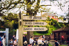 Sign post (w.mekwi photography [here & there]) Tags: wales tygwydr niftyfifty dof bokeh signpost garddrhosod welsh maeschwarae cardiff wmekwiphotography nikond800 roathpark