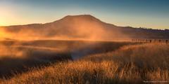Keep Walking (...Kush...) Tags: landscape mist winters sunrise australia frost dew dewdrops cold downunder queensland brisbane west nikon